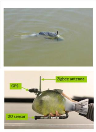 Architecture of Robotic Sensor Network